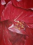 80 x 60 Dobbelt hawaiiblomst under bearbejdning - akryl