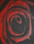 80 x 60 Sort rød rose - akryl