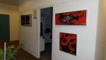 Rød Fransk Anemone serie af 3 billeder.JPG