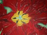 2008 60 x 80 Rød tulipan m. sølv ramme - akryl