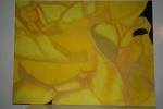 2008 60 x 80 Påskelilje under bearbejdning - akryl TASKE
