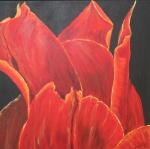 2011 50 x 50 Orange tulipaner m. sort ramme - akryl SOLGT