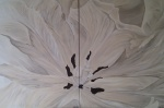 2011 2-delt 80 x 60 Beige tulipan uden ramme -akryl