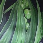 230911 100 x 100 Grøn plante fra Tivoli m. sølv ramme - akryl