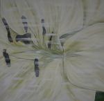 100 x 100 Hvid lilje m. sølv ramme - akryl